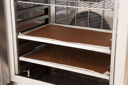 Biscuit al cioccolato (base)